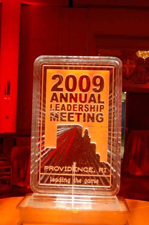 2009 Leadership 3D Logo Snowfill