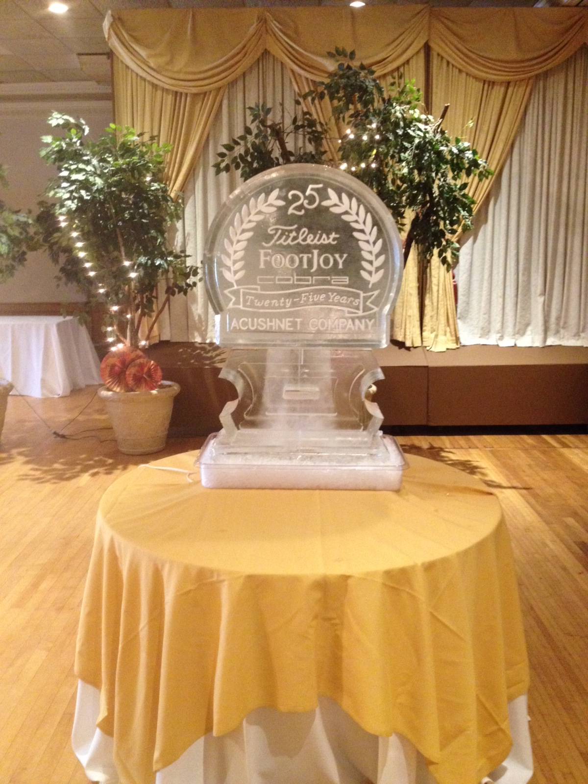 Acushnet Company 25 Years Snowfill