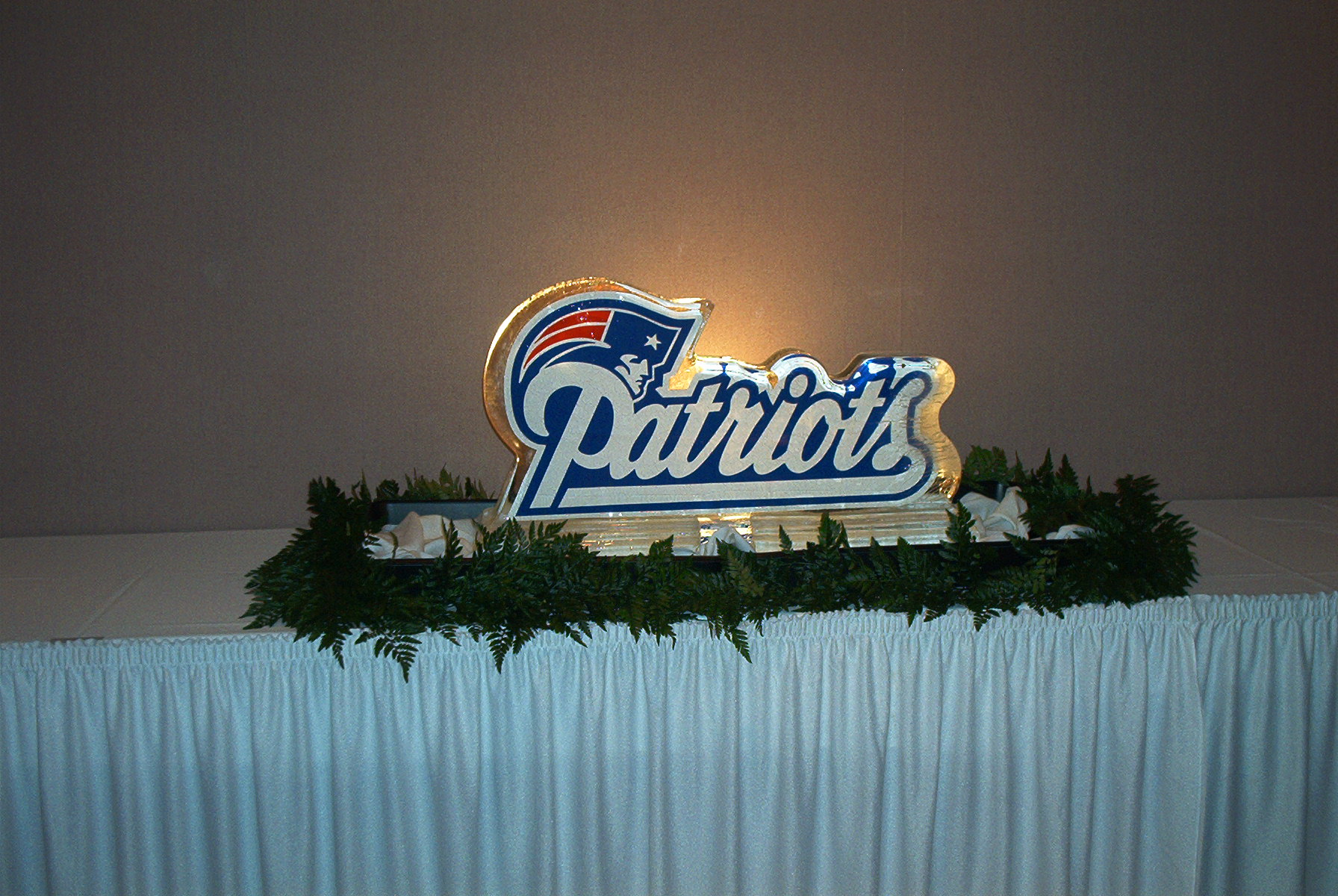 Patriot's Logo In Ice
