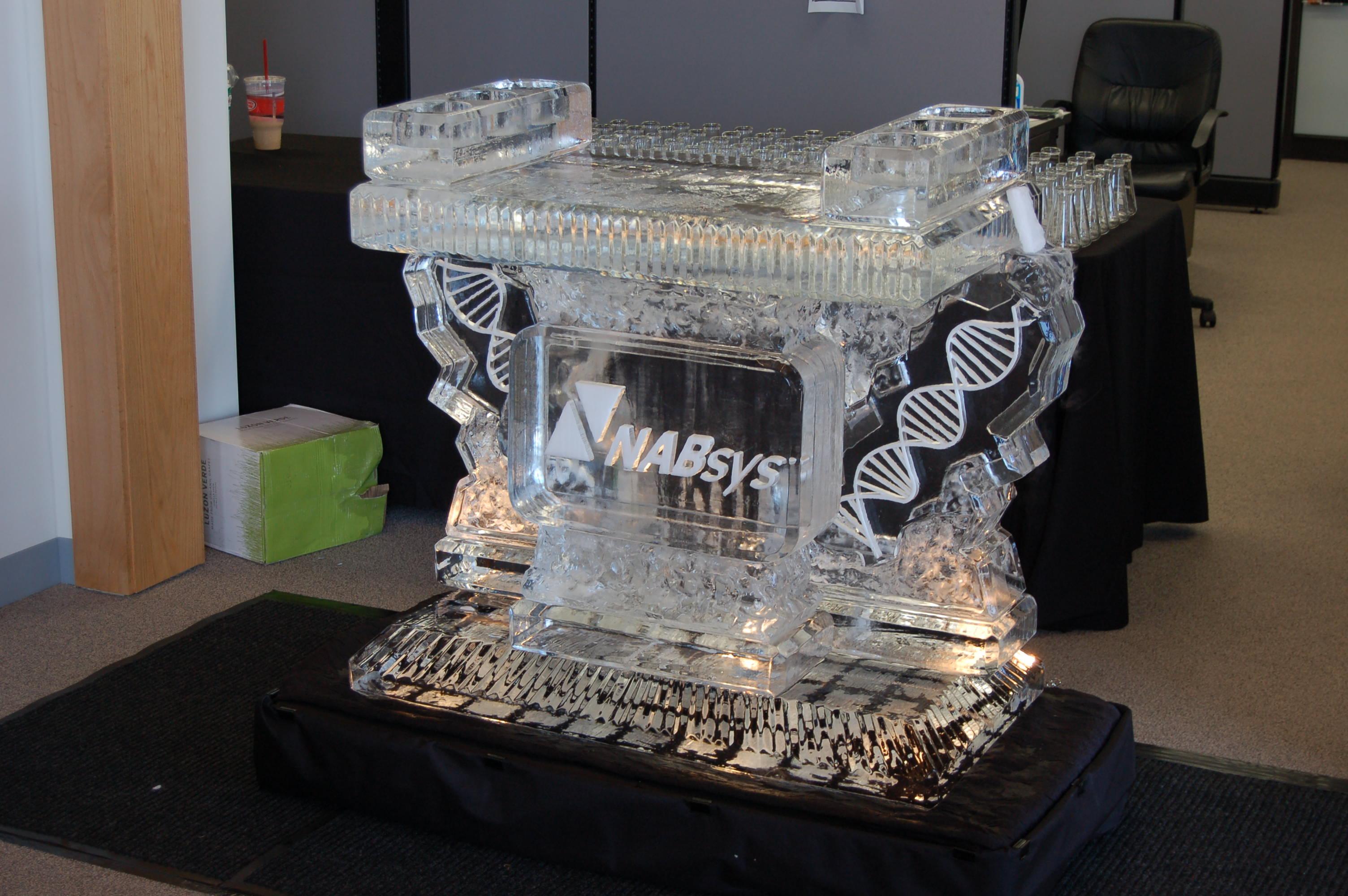 Nabsys DNA Mini Ice Bar