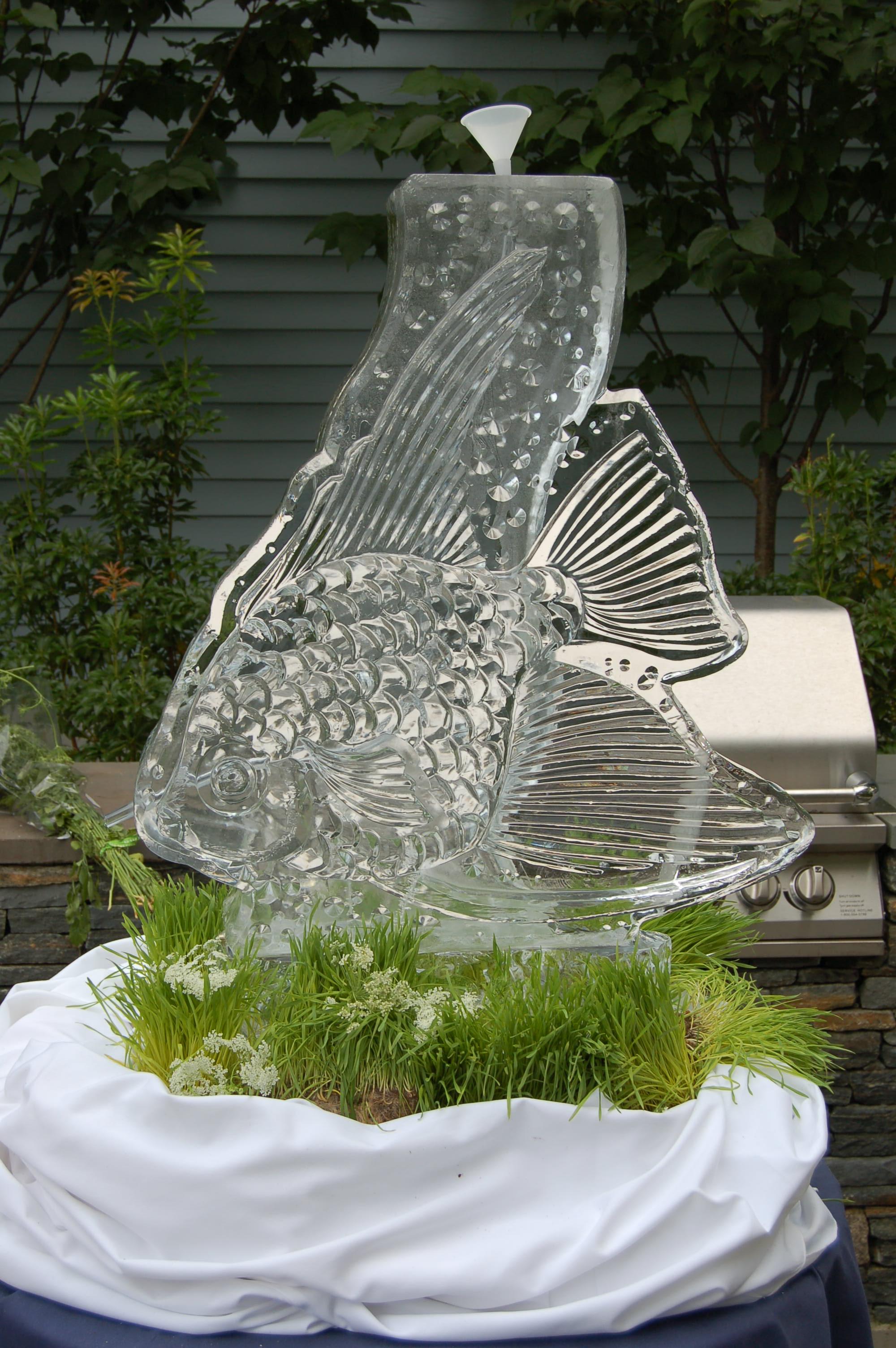 Angel Fish Tube Luge