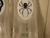 Spider Luge