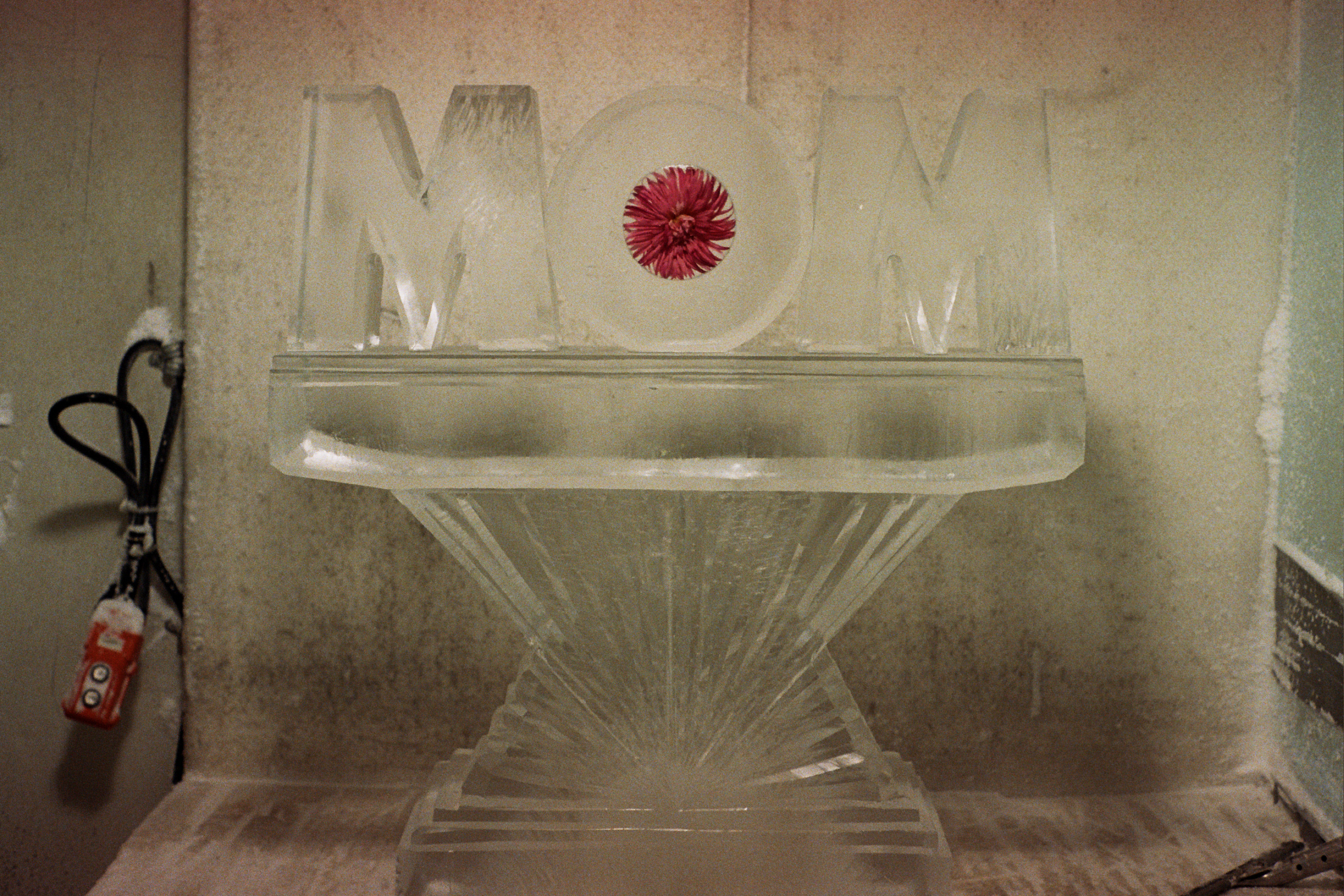 Mom with Flower in O